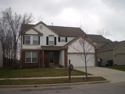 Blacklick Single Family Home For Sale: 7963 Waggoner Woods Drive