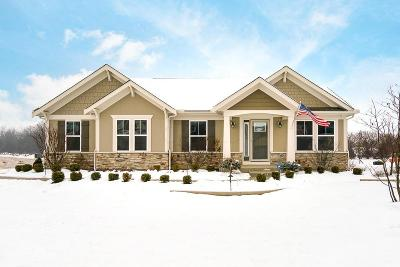 Hilliard Single Family Home For Sale: 3489 Woodland Drive