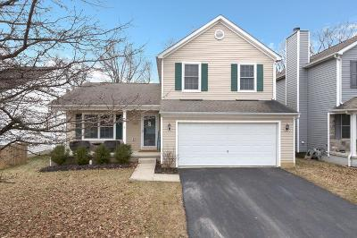 Lewis Center Single Family Home For Sale: 8623 Smokey Hollow Drive