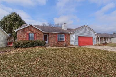 Sunbury Single Family Home For Sale: 295 Cottontail Drive