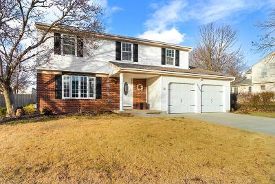 Dublin Single Family Home For Sale: 3224 Cranston Drive