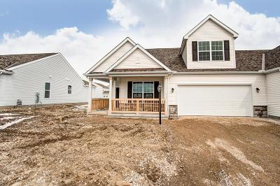 Licking County Single Family Home For Sale: 144 Winterfield Drive