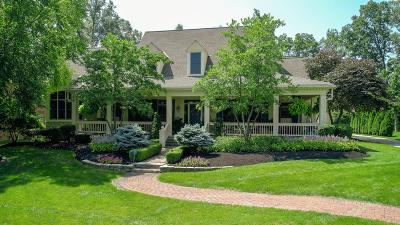Dublin Single Family Home For Sale: 8101 Tartan Fields Drive