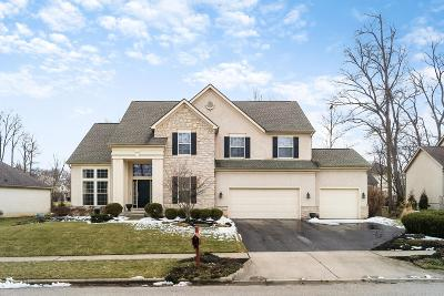 Lewis Center OH Single Family Home For Sale: $439,900