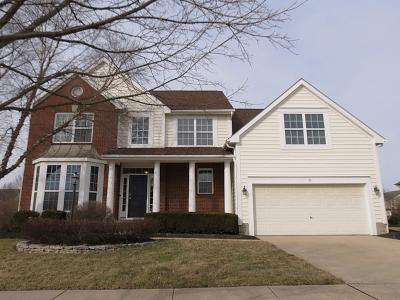 Powell Single Family Home For Sale: 4456 Scioto Parkway