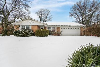 Westerville Single Family Home For Sale: 160 Barcelona Avenue