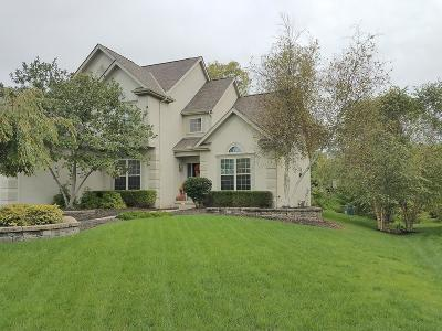 Galena Single Family Home For Sale: 2621 Pointewood Loop