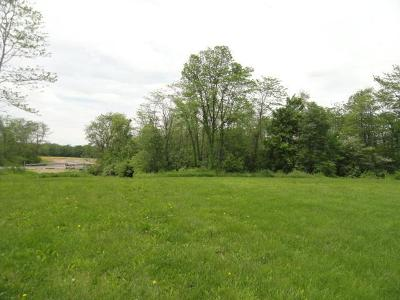 Plain City Residential Lots & Land For Sale: 13041 Wycliffe #lot 14
