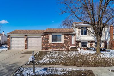 Single Family Home For Sale: 8272 Glencrest Drive