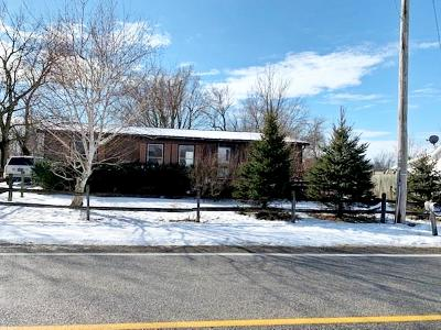 Union County Single Family Home For Sale: 20665 State Route 47