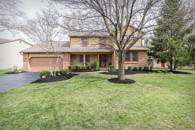 Dublin Single Family Home For Sale: 6993 Fitzgerald Road