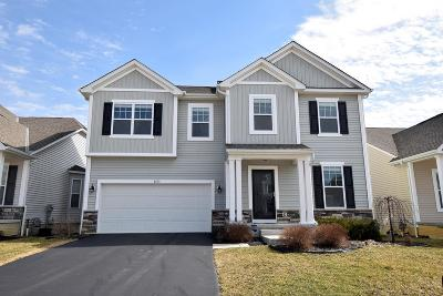 Westerville Single Family Home For Sale: 6170 Dajana Drive