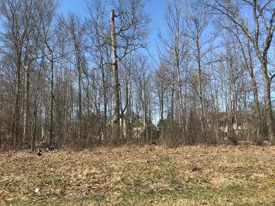 Dublin Residential Lots & Land For Sale: 10738 Brinsworth Drive