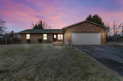 Single Family Home For Sale: 6273 Geyer Drive