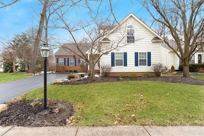 Powell Single Family Home For Sale: 590 Gradall Court