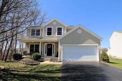 Sunbury Single Family Home For Sale: 773 Heartland Meadows Drive