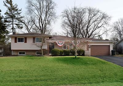 Hilliard Single Family Home For Sale: 3495 Wenwood Drive