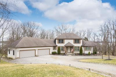 Delaware County, Franklin County, Union County Single Family Home For Sale: 3387 S Old 3c Highway
