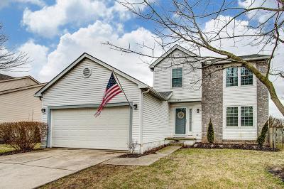Hilliard Single Family Home For Sale: 2328 Highlandtown Drive
