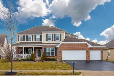 Powell Single Family Home For Sale: 6355 Scioto Chase Boulevard