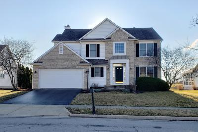 Powell Single Family Home For Sale: 7439 Scioto Parkway