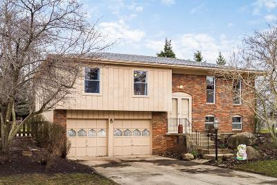 Single Family Home For Sale: 1000 Ruskin Drive