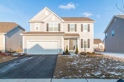 Columbus Single Family Home For Sale: 4876 Black Sycamore Drive