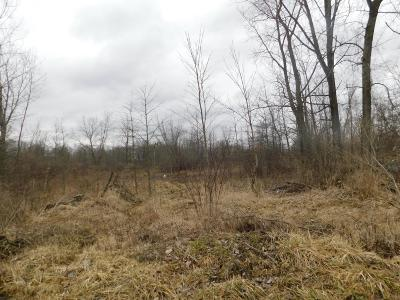Residential Lots & Land For Sale: Connor Avenue SW #Lots 20-