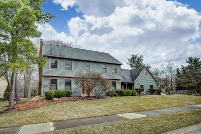 Powell Single Family Home For Sale: 264 Olentangy Ridge Place