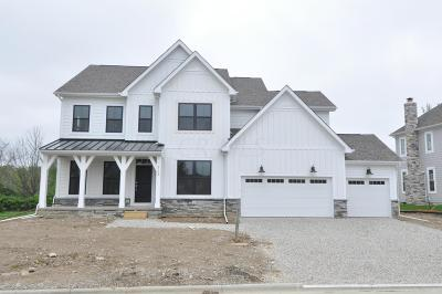 Dublin Single Family Home For Sale: 6548 Dicesare Loop #Lot 51