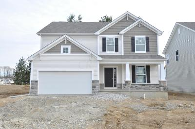 Columbus Single Family Home For Sale: 3026 Wolfbirch Drive #Lot 196