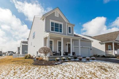 Westerville Single Family Home For Sale: 5951 Seldon Drive