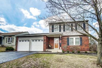Columbus Single Family Home For Sale: 1337 Eagle View Drive