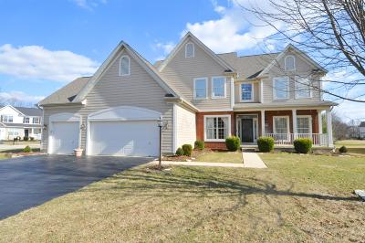 Dublin Single Family Home For Sale: 6699 Park Mill Drive