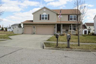 Grove City Single Family Home For Sale: 3654 Lake Lanier Drive