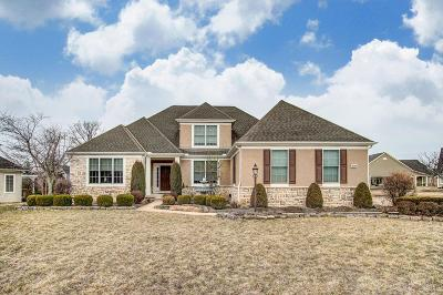 Union County Single Family Home For Sale: 920 Walker Woods Lane