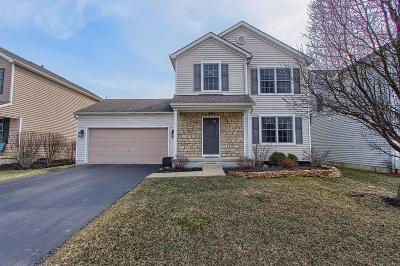 Lewis Center Single Family Home For Sale: 8836 Rock Dove Road