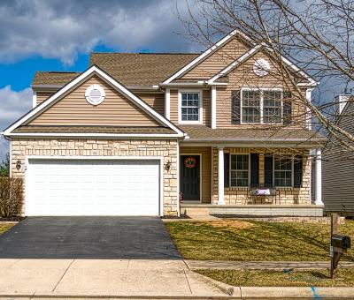Lewis Center Single Family Home For Sale: 46 Gold Meadow Drive