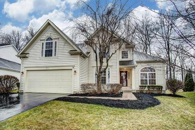 Westerville Single Family Home For Sale: 1256 Blacksmith Drive