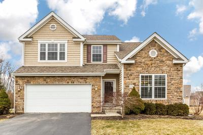 Delaware Single Family Home For Sale: 524 Apple Valley Circle