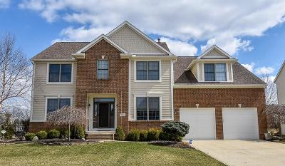 Pickerington Single Family Home For Sale: 8210 Garden Drive