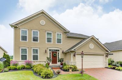 Powell Single Family Home For Sale: 8115 Coldwater Drive