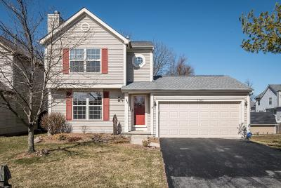 Columbus Single Family Home For Sale: 5980 Wexford Park Drive