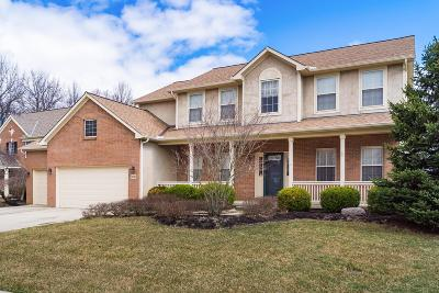 Franklin County, Delaware County, Fairfield County, Hocking County, Licking County, Madison County, Morrow County, Perry County, Pickaway County, Union County Single Family Home For Sale: 8281 Kristin Court