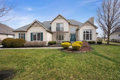 Blacklick Single Family Home For Sale: 1610 Eagle Glen Drive