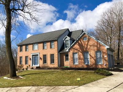 Franklin County, Delaware County, Fairfield County, Hocking County, Licking County, Madison County, Morrow County, Perry County, Pickaway County, Union County Single Family Home For Sale: 939 Woodsedge Lane