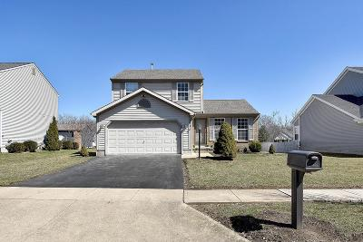 Hilliard Single Family Home For Sale: 3428 Patcon Way