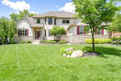 Blacklick Single Family Home For Sale: 853 Poppy Hills Drive
