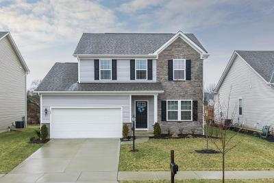 Delaware Single Family Home For Sale: 179 Old Colony Drive