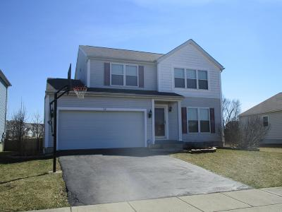 Blacklick Single Family Home For Sale: 728 Grayfeather Drive